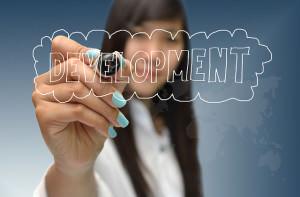 Development in Business