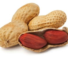 CFIA Issues Salmonella Warning on Almond and Peanut Products
