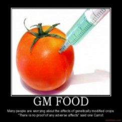 GMO foods and its laws