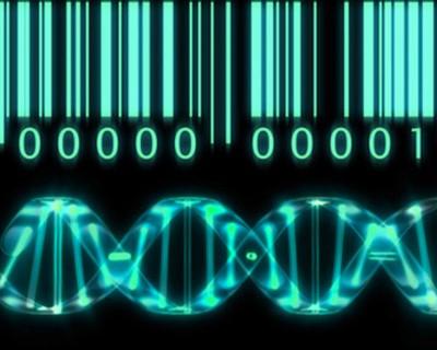Image courtesy of bionews-tx.com